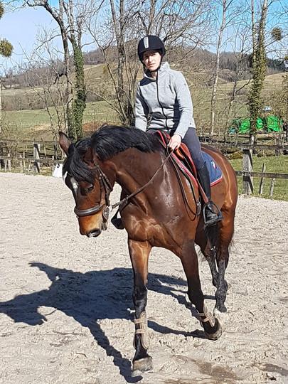 Deuxième casquette de cavalière/monitrice d'équitation