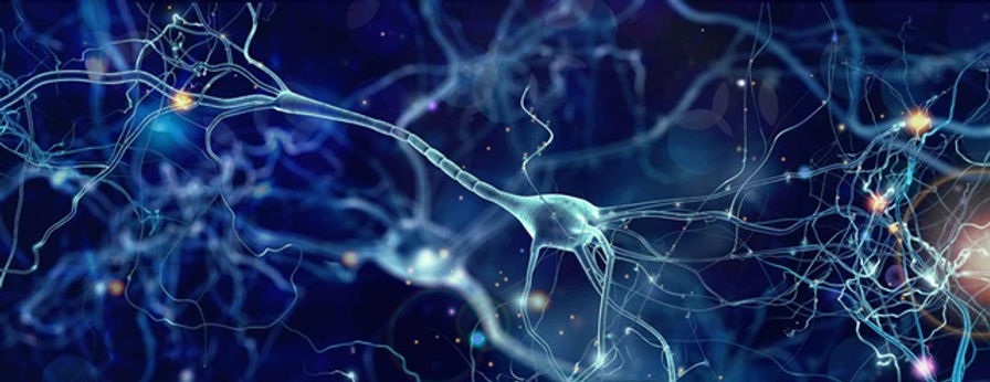 neuron illustration hero.jpg