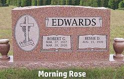 color - morning rose.jpg