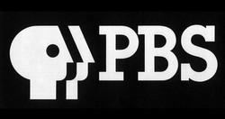 pbs_logo_2017