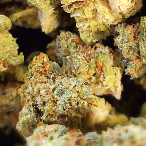 Lucky Charms THC-23.96% TERPENES-2.31 50/50