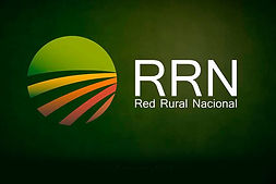 logo-rrn.jpg