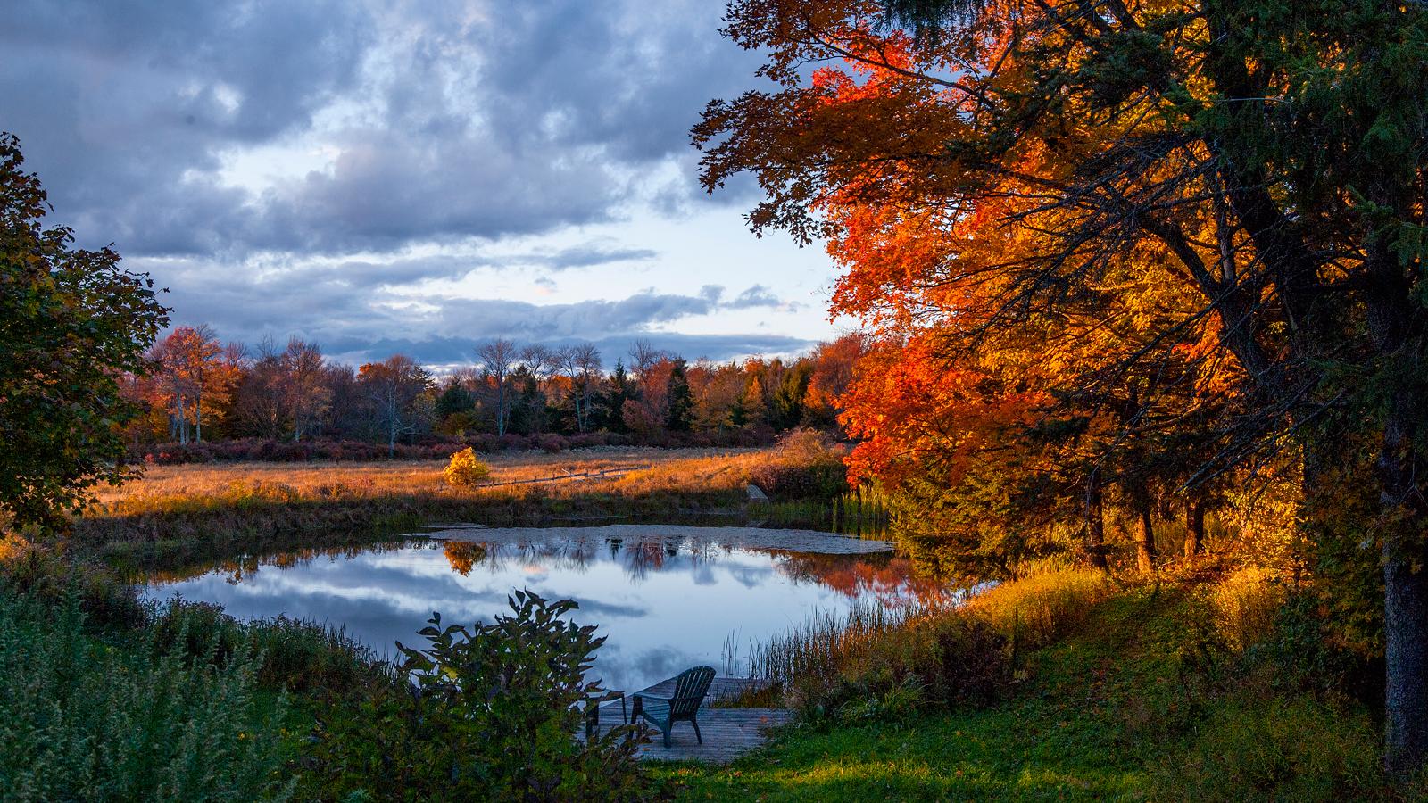 Duke Pottery fall pond