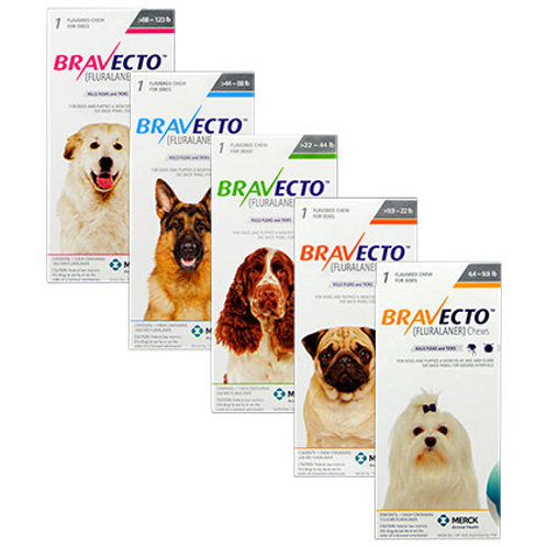 Bravecto for Dogs (One Chew)