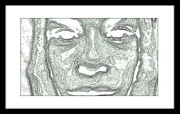 face landscapes frame 1.jpg