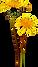 kisspng-dandelion-clip-art-flower-tulip-