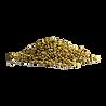 —Pngtree—coriander_seeds_loose_heap_4004