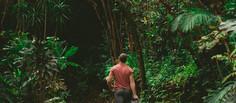 Gokarna Trekking