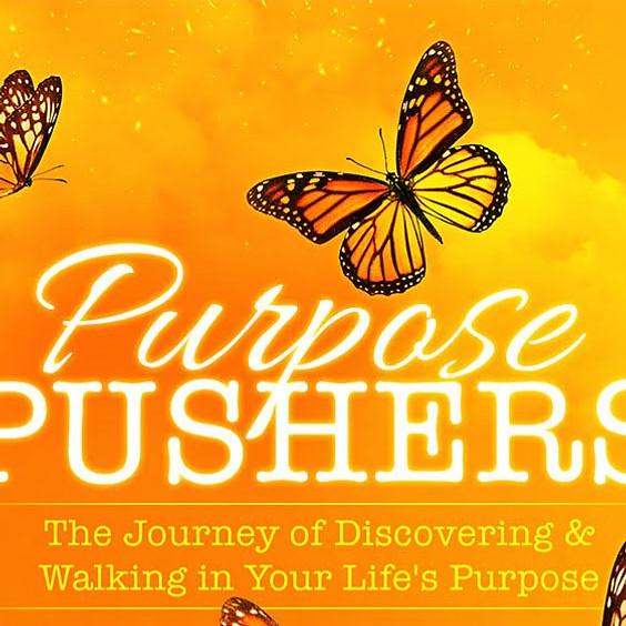 Purpose Pushers Book Launch