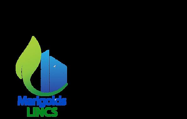 BLUE MARIGOLDS GREEN LINCS.png