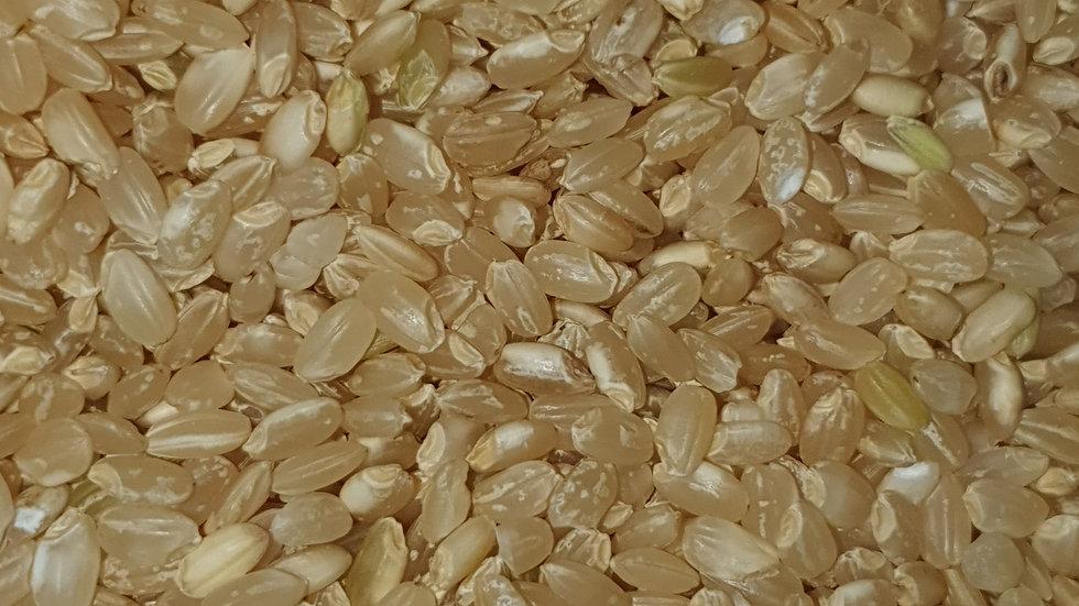 Organic Brown Rice (Short Grain)
