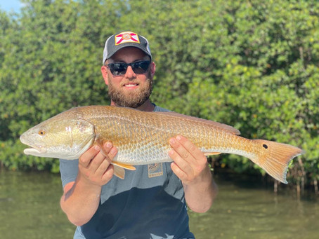 Tampa Fishing Charters Heating Up
