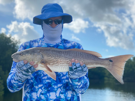 Tampa Bay Fishing Charters August Fishing Report