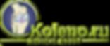 Koleno.ru-клиника артроскопической хирургии и восстановительного лечения коленного сустава.