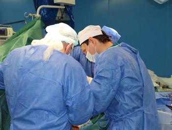Как выбрать плечевого хирурга?