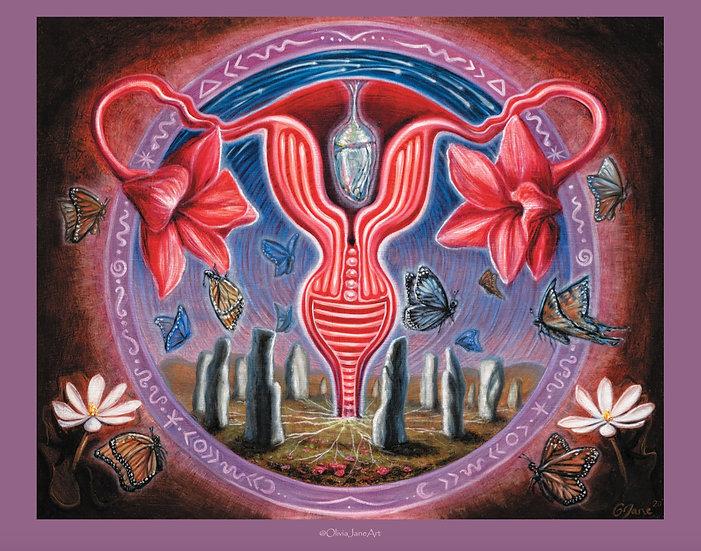 Divine Metamorphosis