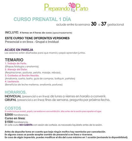 CURSO 1 DÍA.jpg