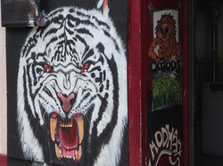Tiger Street mural