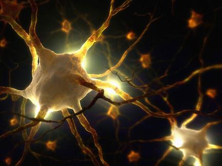 ¡Los científicos descubren biofotones en el cerebro que podrían insinuar que nuestra conciencia está