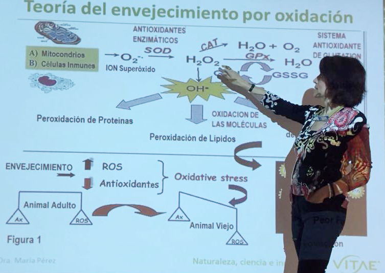 Beneficios e inconvenientes del Estrés Oxidativo