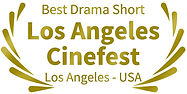 Best Drama Short Los Angeles Cinefest Mi amigo Naim