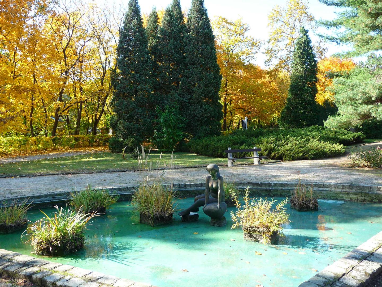 Vízbenéző kora ősz