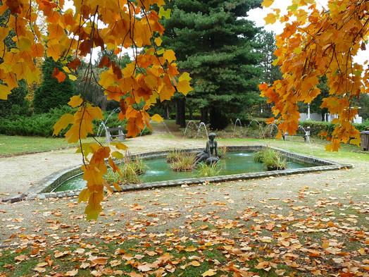 Vízbenéző ősz
