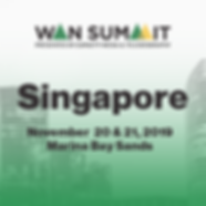WAN SUMMIT SINGAPORE-square.png