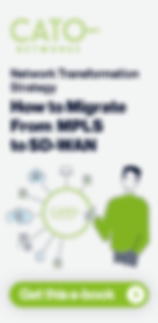 ebook-Network Transformation Strategy-TE