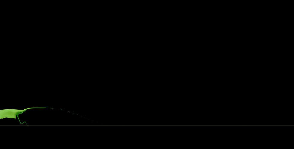 Balance Beam(平均台)