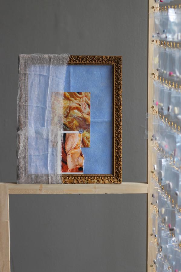 Étalage Thérapeuthique (détail) / bois, sachet plastique, pillules, cadre, tissu, photo, fils, fermoirs / H200xL100xP40cm, 2018, Caen.