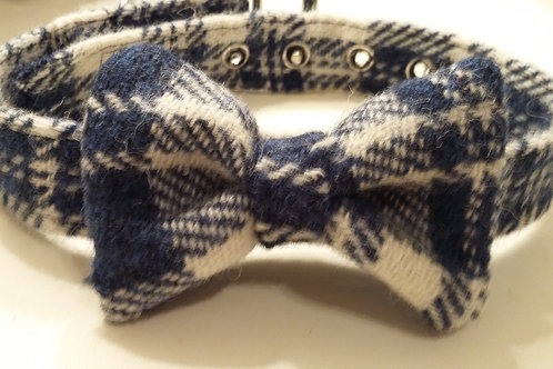 The Blue and white check