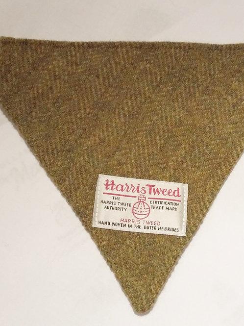 Olive green bandana