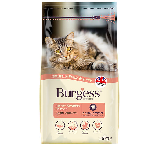 Burgess Adult Cat Scottish Salmon Dry Food