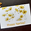 Thumbnail: Happy Spring! - Postcard