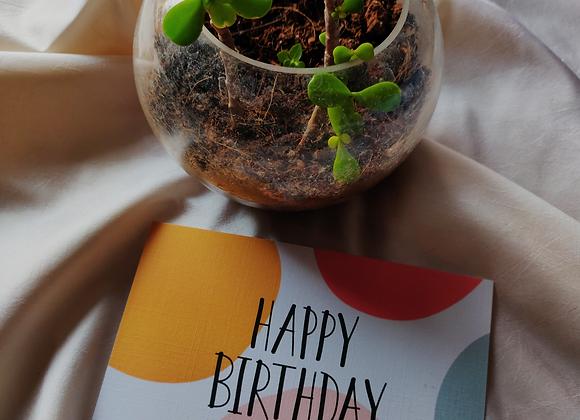 Multicolor - Happy Birthday Greeting