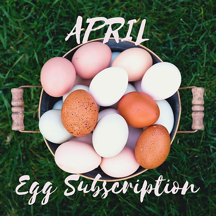 April Egg Subscription