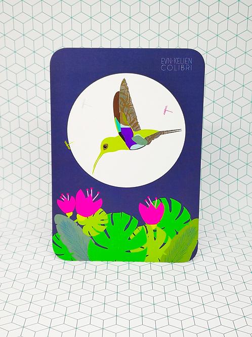 Mini-carte Colibri