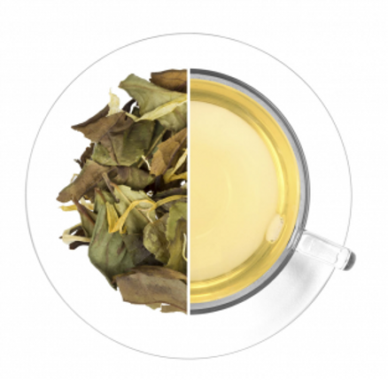 White Tea with Pineapple & Kiwi (Pineapple Express) (100g)