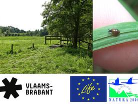 Boost voor natuur in de regio dankzij provincie Vlaams-Brabant