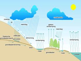 Grondwaterpeilmeting