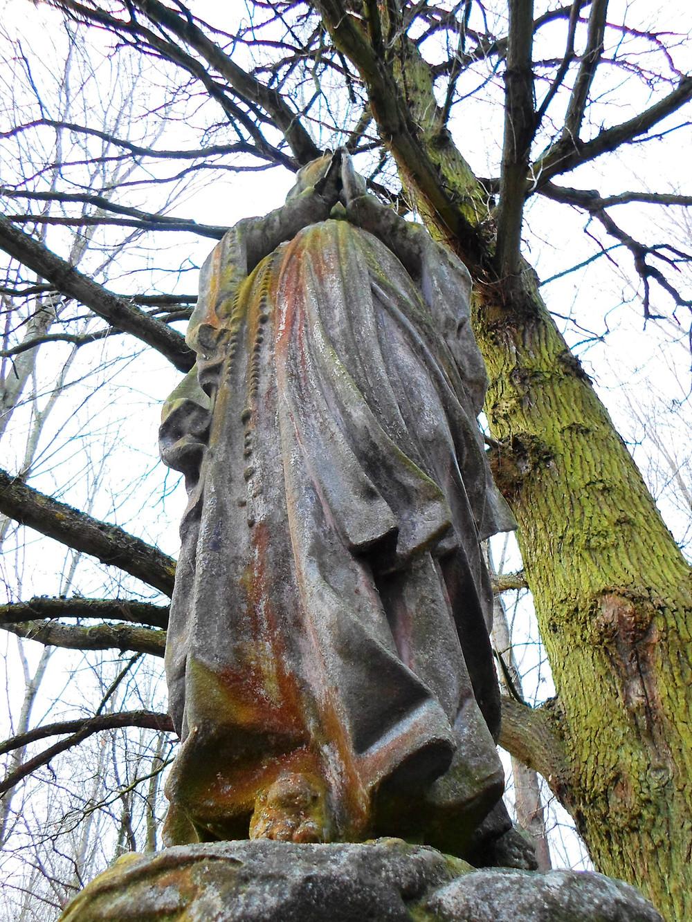 Foto: Zwarte Madam Natuurpunt Kampenhout