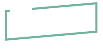 Todisco for City Council Logo.png