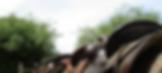 saddleup01.png