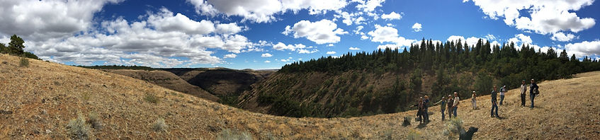 Panorama of Rock Creek Canyon, with a group of people standing at its edge.