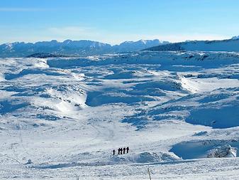 Plateau de Font d'Urle.