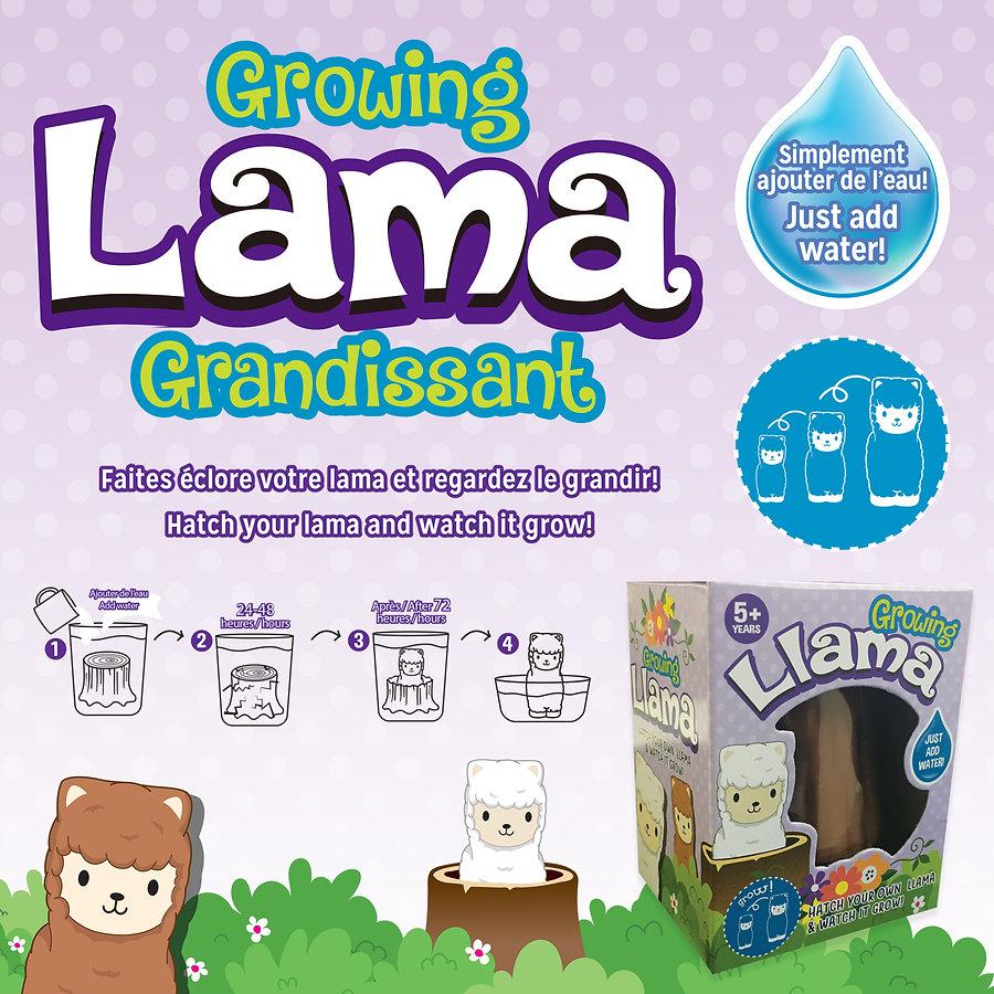 Web-GrowingLama.jpg