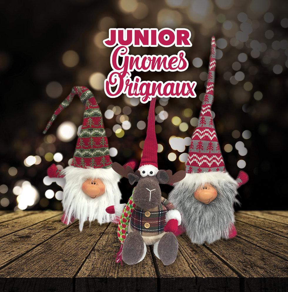 JuniorGnomes.jpg