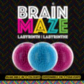 IconeWix_BrainMaze_P-E-2019.jpg