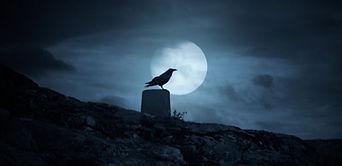 Scary-Full-Moon-Crow-Night-©-Zacarias-Pe